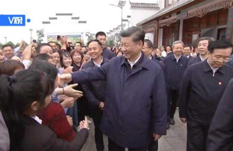 独家视频丨习近平在光山县深入油茶园和农村考察调研