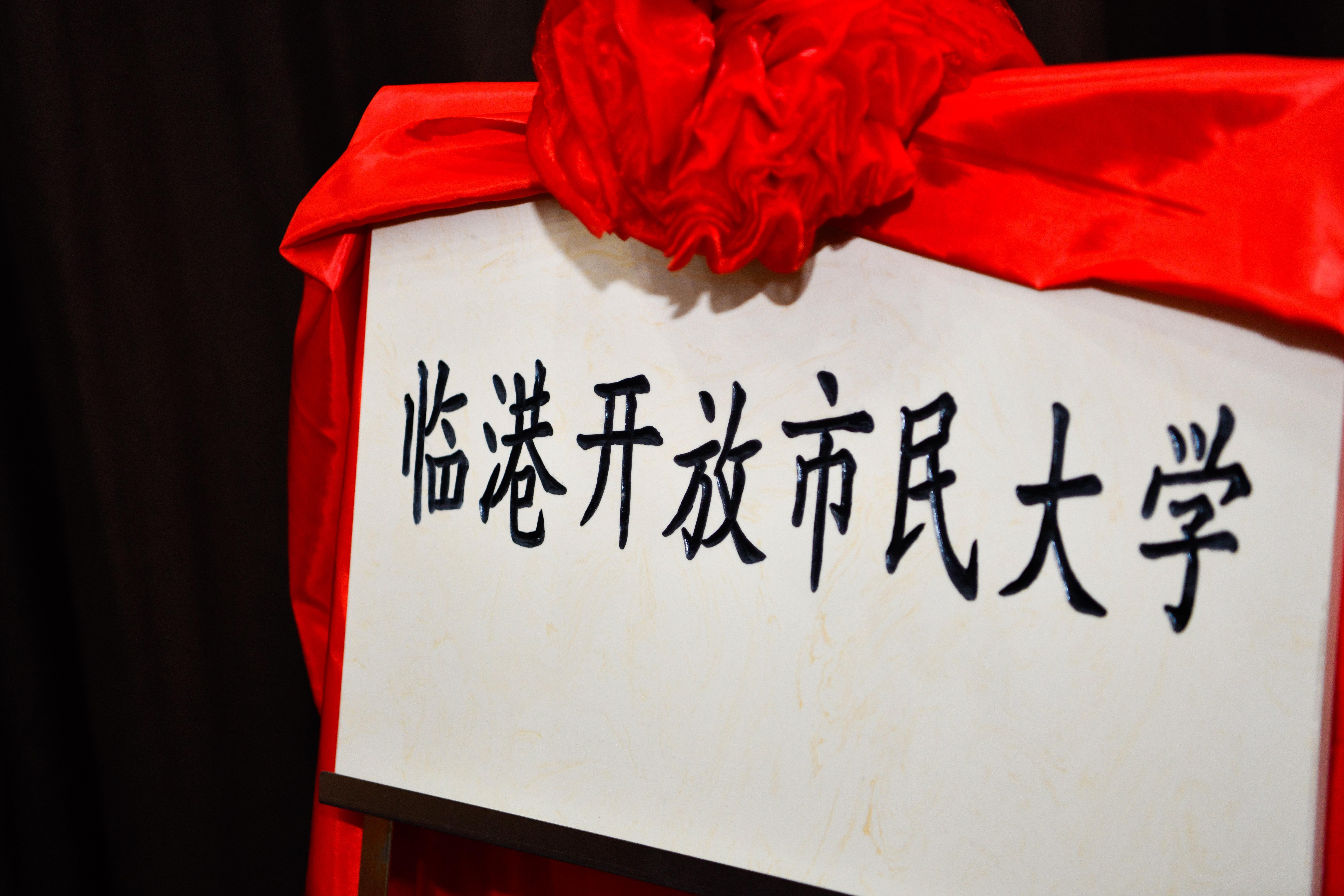 临港开放市民大学今天成立啦!