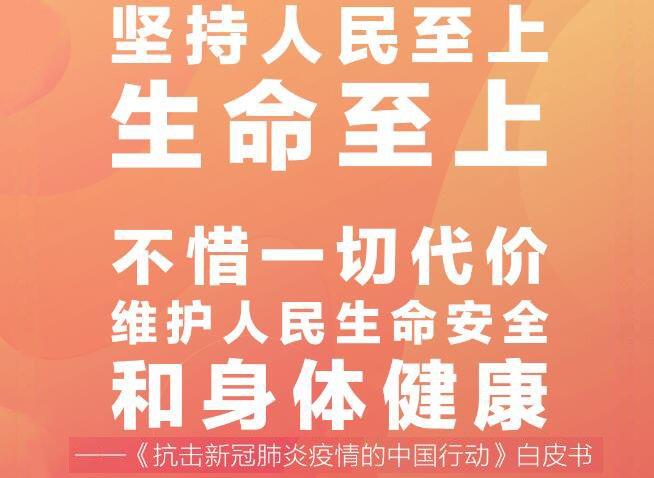 十张海报看《抗击新冠肺炎疫情的中国行动》白皮书