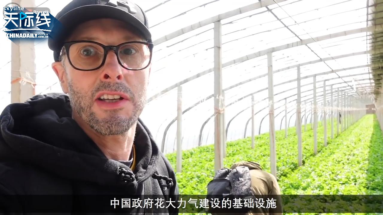 【中国那些事儿】英国视频博主:别再无脑抹黑了!来看中共为了让农村富起来有多拼